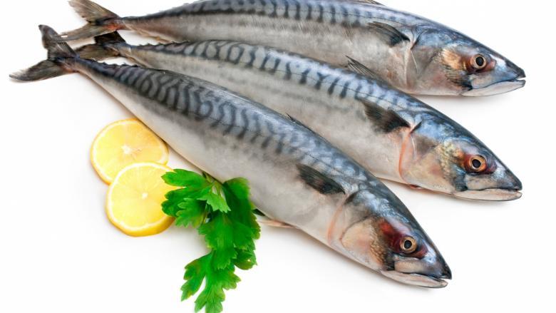 تناول الأسماك بكثرة خلال الحمل يعزز نمو الدماغ لدى الأطفال