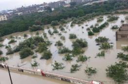 """الزراعة بغزة توجه نصائح للمزارعين بشأن إعصار """"الوحش المداري"""""""