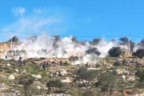 عشرات الإصابات في مواجهات مع الاحتلال بالضفة