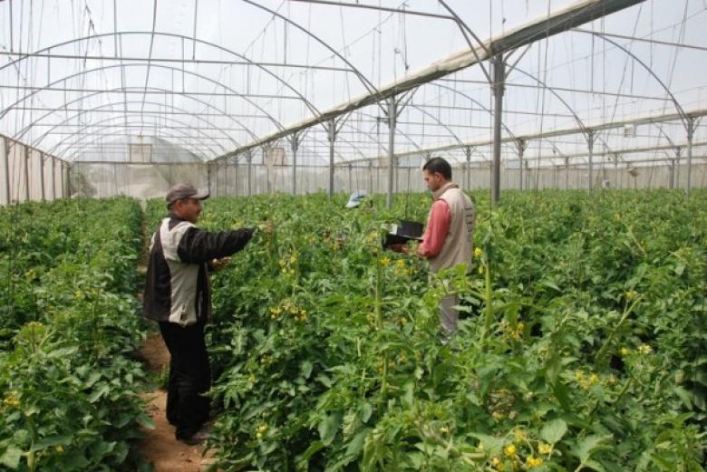 """""""العمل الزراعي"""" يعلن عن منح دراسات عليا في برنامج التنمية المستدامة"""