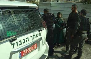 جنود الاحتلال يفتشون سيدة في سلوان