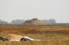 الاحتلال يطلق النار على أراضي المواطنين جنوب القطاع