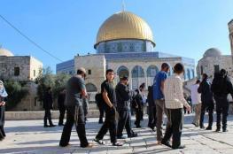 """418 مستوطن """"اقتحموا"""" باحات المسجد الأقصى هذا الأسبوع"""