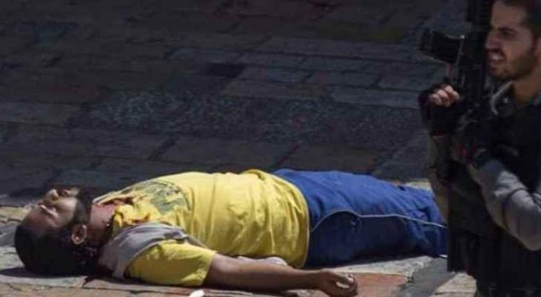 """الخارجية الأردنية تندد بقتل الاحتلال الشهيد """"العمرو"""""""
