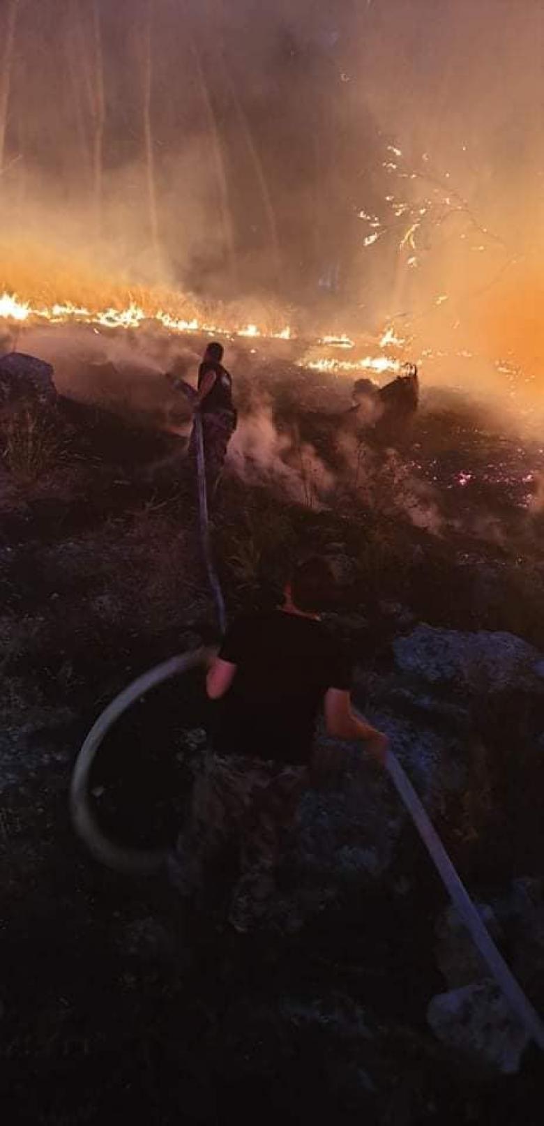 حريق أعشاب وأشجار في مناطق متفرقة بمحافظة جنين