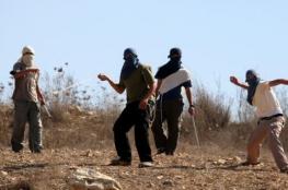 مستوطنون يرشقون مركبات المواطنين بالحجارة شرق الخليل
