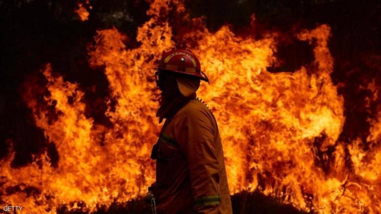 """بعد 40 عاما.. """"الشجرة الخادعة"""" تقتل رجل إطفاء في أستراليا"""