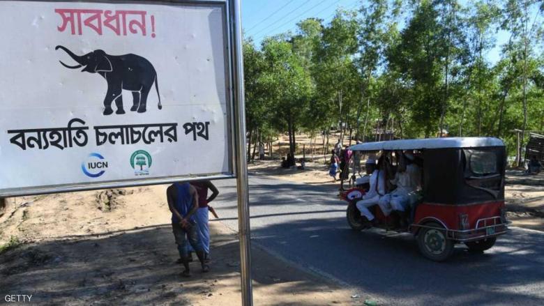 فيلة تقتل روهينغا أثناء نومهم بمركز إيواء في بنغلادش