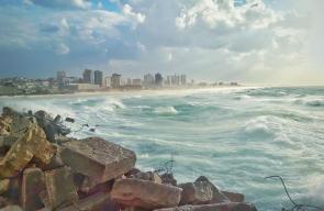 ميناء غزة مساء اليوم