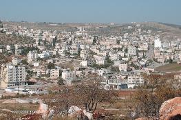 """""""بيتسليم"""": مستوطن يضع أبقاره في معسكر تياسير المُخلى"""