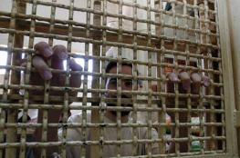 الاحتلال يحكم على الأسير مرعي بالسجن 35 عاما