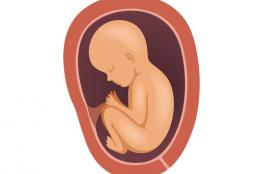 ما هو وزن الجنين في الشهر الثامن من الحمل؟