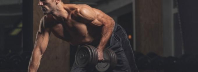 تضخيم-العضلات