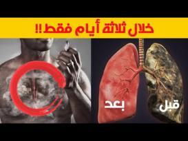 4 مأكولات مدهشة.. لتنظيف رئتيك من أثار التدخين بسهولة
