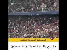 جماهير مصر تهتف لفلسطين فى مباراة الأولمبي وجنوب إفريقيا