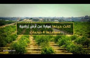 حارة اليهود بغزة