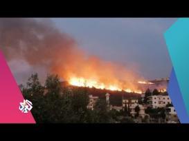 حرائق كبيرة تلتهم مناطق واسعة في لبنان والسلطات تستعين بقبرص