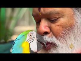 هندي يدخل موسوعة غينيس بأكبر قفص طيور في العالم
