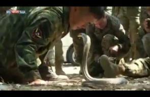 تدريبات لمشاة البحرية الأميركية للتأقلم مع الحياة في الغابات الاستوائية