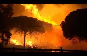 حرائق في غابات إسبانيا