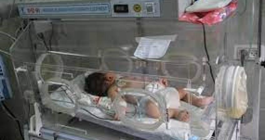 3446 مولوداً جديداً في قطاع غزة خلال مايو الماضي