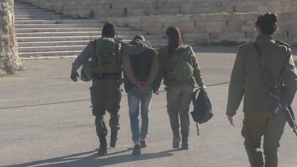الاحتلال يعتقل طالبًا في الخليل المحتلة