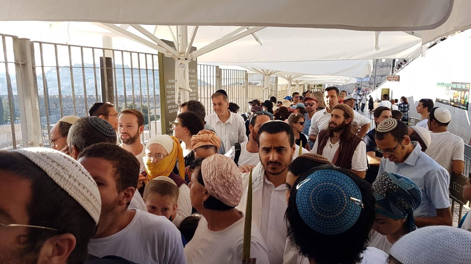 أكثر من 500 مستوطن يقتحمون باحات الأقصى