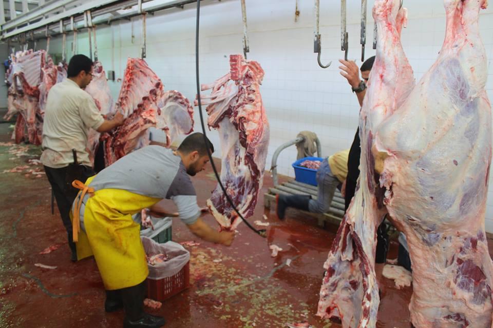 """مسجد """"المغربي"""" يُطلق مشروع توزيع اللحوم الطازجة"""