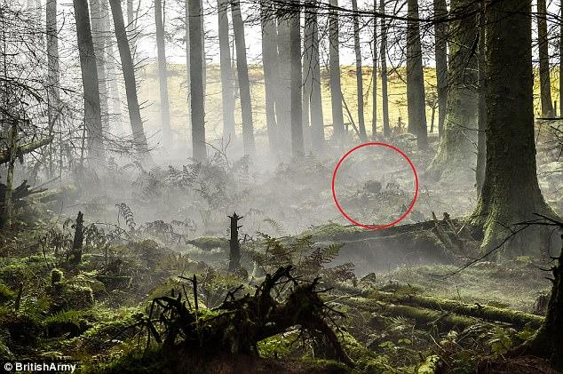 هل يمكنك تحديد مكان الجندي في الصورة؟