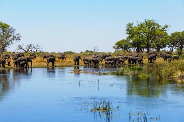 نامبيا وجهة المغامرات